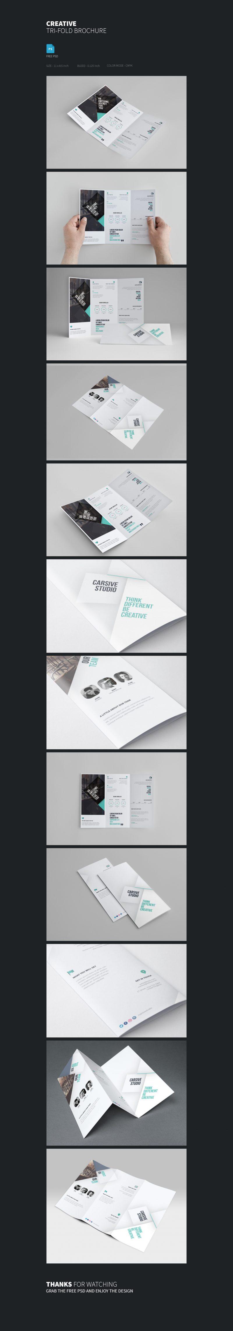 Creative Tri-fold Brochure Template Free PSD